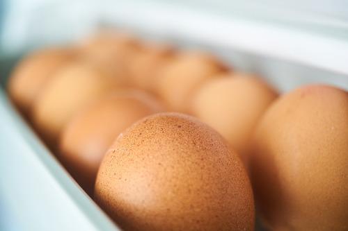 產蛋率是什麼?怎麼計算? | 飼料添加劑